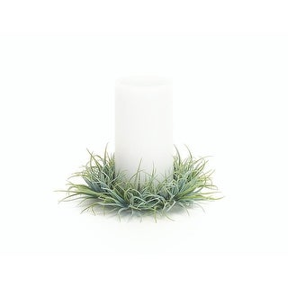 "6"" Decorative Artificial Tillandsia Recurvata Air Plant Pillar Candle Ring"
