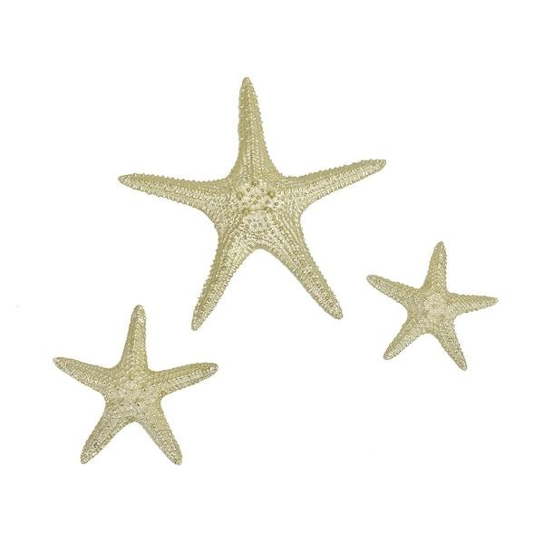 "Brewster X67600B Habitat Yelton 6"" x 12"" Starfish Resin Wall Sculpture - Set of (3) - Metallic"