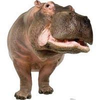 Advanced Graphics 1484 Hippopotamus