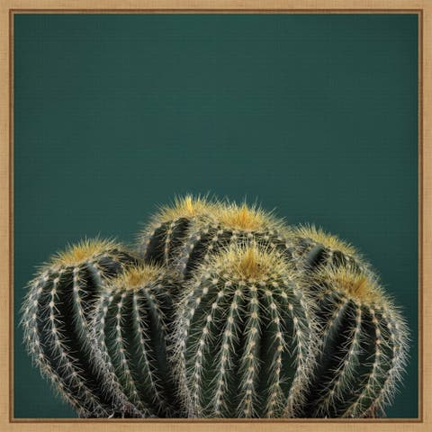Cactus I by Andre Eichman Framed Canvas Art