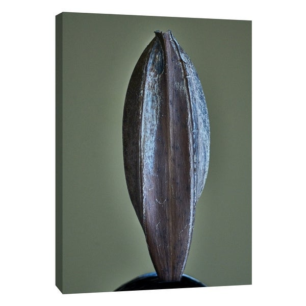 """PTM Images 9-108363 PTM Canvas Collection 10"""" x 8"""" - """"Hawaii Leaf E"""" Giclee Flowers Art Print on Canvas"""