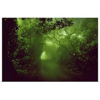 """Rainforest"" Poster Print"