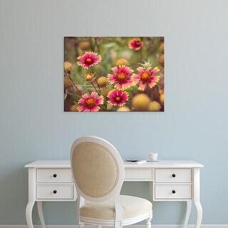 Easy Art Prints Sonja Quintero's 'Wild Blooms II' Premium Canvas Art