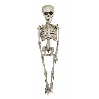Bethany Lowe 47 Inch Hanging Skeleton