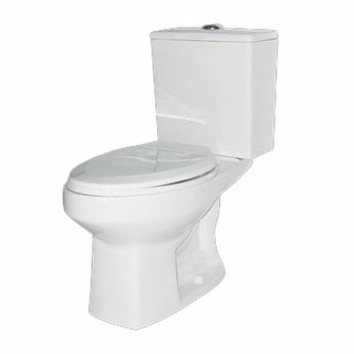 White Ceramic Elongated Dual Flush Toilet Seat Included Renovator's Supply