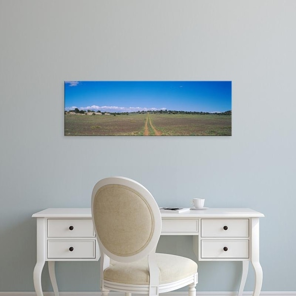Easy Art Prints Panoramic Images's 'Tire Tracks On A Field, Canyonlands National Park, Utah, USA' Premium Canvas Art
