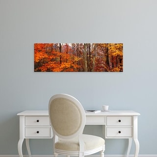 Easy Art Prints Panoramic Image 'Autumn trees in Great Smoky Mountains National Park, North Carolina, USA' Canvas Art