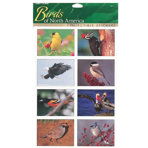 "9"" Multi-Color Sticker Sheet Birds from North America"