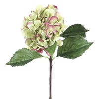 Club Pack of 12 Artificial Green Hydrangea Silk Flower Sprays 27""