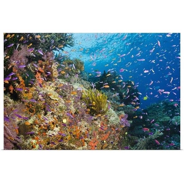 """""""Coral reef with shoals of tropical fish"""" Poster Print"""