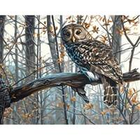 Dimensions 436355 Paint By Number Kit 14 in. x 11 in. -Wise Owl