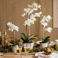 G Home Collection Rustic White Orchid Potted Plant in Various Size