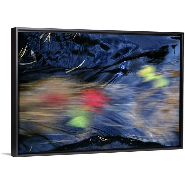 Floating Frame Premium Canvas With Black Enled Fallen Pine Needles And Autumn Color Leaves