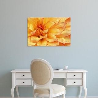 Easy Art Prints Darrell Gulin's 'Dahlia Flower With The Petals Radiating Outward Ii' Premium Canvas Art