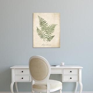 Easy Art Prints Wild Apple's 'Vintage Ferns IX no Border' Premium Canvas Art