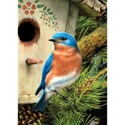 "Eastern Bluebird - Mini Paint By Number Kit 5""X7"""
