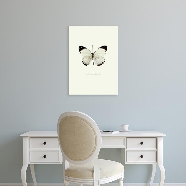 Easy Art Prints GraphINC's 'White Butterfly' Premium Canvas Art