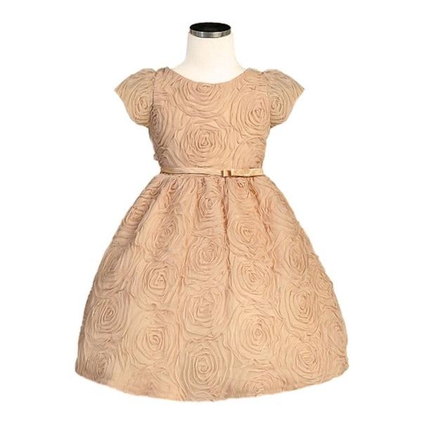 Sweet Kids Baby Girls Size 12M Champagne Rosette Mesh Easter Dress