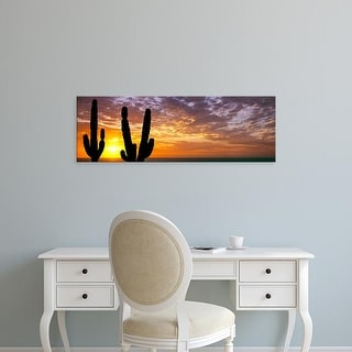 Easy Art Prints Panoramic Image 'Cardon cactus planta, Sea of Cortez, Baja California Sur, Mexico' Canvas Art