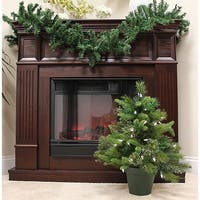 2' Pre-Lit Mixed Pine Cashmere Potted Artificial Christmas Tree - Clear LED - green