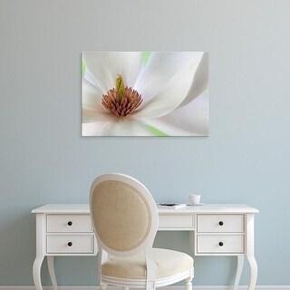 Easy Art Prints Jaynes Gallery's 'Detail Of Magnolia Flower' Premium Canvas Art
