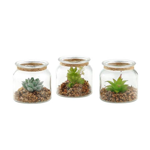 """Set of 3 Clear Handblown Glass Cylindrical Mini Planters 4.5"""""""