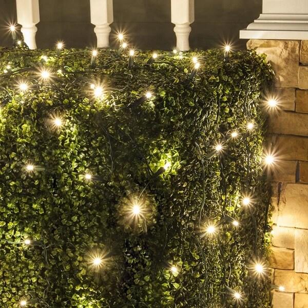 Wintergreen Lighting 72512 100 Bulb 4Ft x 6 Ft LED Decorative Holiday Net Light - Warm White - N/A