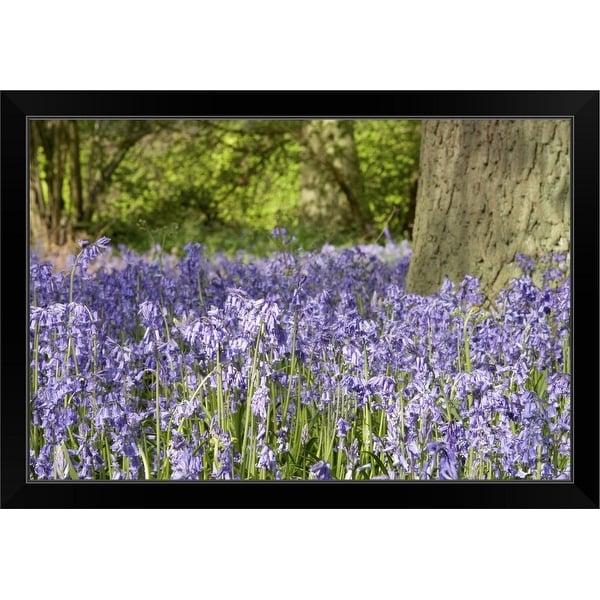 """Lavender field"" Black Framed Print"