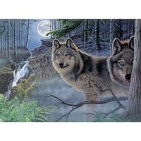 """Mystical Moonlight - Paint By Number Kit 15.375""""X11.25"""""""