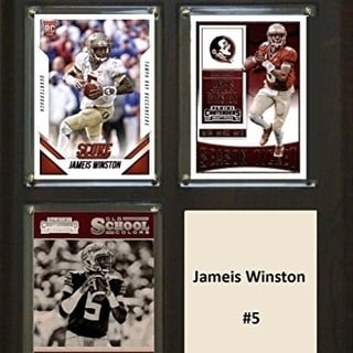 C I Collectables 810WINSTONCO 8 X 10 In Jameis Winston NCAA Florida State Seminoles Three Card Plaque