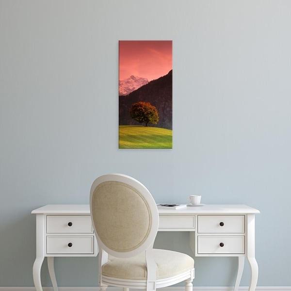 Easy Art Prints Panoramic Images's 'Switzerland, Alps' Premium Canvas Art