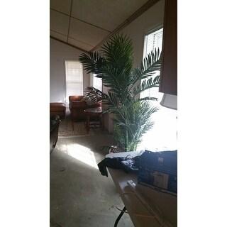 Havenside Home Crane Silk 6.5-foot Golden Cane Palm Tree
