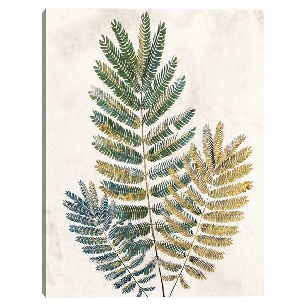 Opulent Ferns Iii By Studio Arts Canvas Art Print On Sale Overstock 32622328