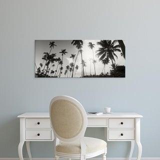 Easy Art Prints Panoramic Images's 'Palm trees on beach, Morro De Sao Paulo, Tinhare, Cairu, Bahia, Brazil' Canvas Art