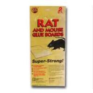 Pic GRT-2F Rat/Mouse Glue Traps