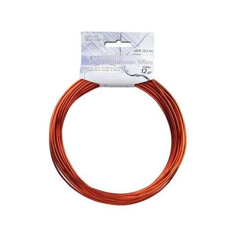 Dazzle It Aluminum Wire 12ga Rnd 30ft Orange