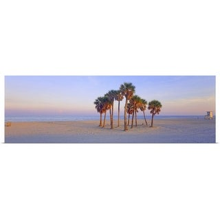 """""""Palm trees on the beach, Florida"""" Poster Print"""