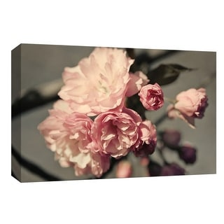 """PTM Images 9-148073  PTM Canvas Collection 8"""" x 10"""" - """"Amelia's Garden III"""" Giclee Flowers Art Print on Canvas"""