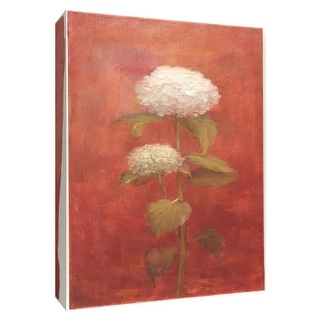 """PTM Images 9-154599  PTM Canvas Collection 10"""" x 8"""" - """"White Hydrangea on Red"""" Giclee Hydrangeas Art Print on Canvas"""