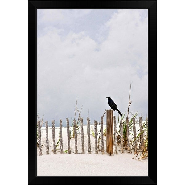 """Crow sitting on wooden fence at Pawley's Island, South Carolina, USA."" Black Framed Print"