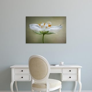 Easy Art Prints Mandy Disher's 'Summer Swirl' Premium Canvas Art