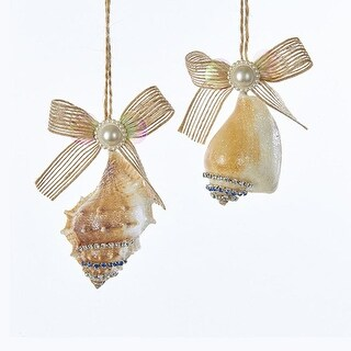 """Club Pack of 24 Brown and Off White Seashell With Pearl/Ribbon Bow Ornaments 4.1"""""""