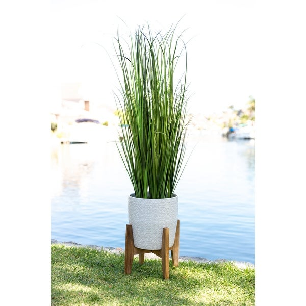 "50"" Onion Grass in 10"" Cathdral Ceramic on Stand. Opens flyout."