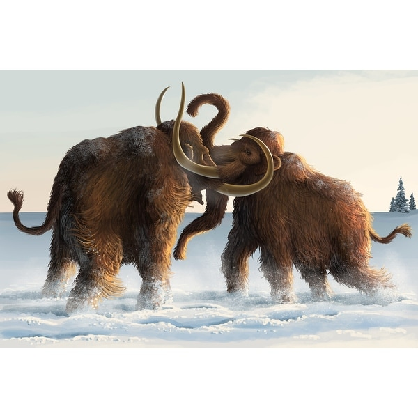 Wooly Mammoths - LP Artwork (100% Cotton Towel Absorbent)
