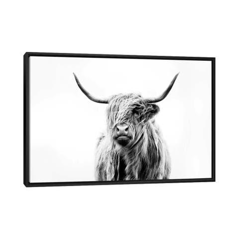 "iCanvas ""Portrait Of A Highland Cow"" by Dorit Fuhg Framed Canvas Print"