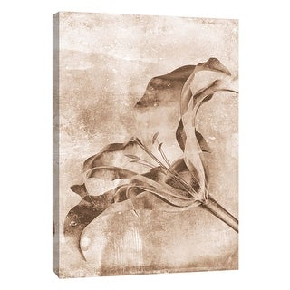 "PTM Images 9-105794  PTM Canvas Collection 10"" x 8"" - ""Sepia Flower Inversions 3"" Giclee Flowers Art Print on Canvas"