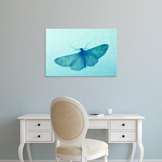 Easy Art Prints Paul Colangelo's 'Moth' Premium Canvas Art