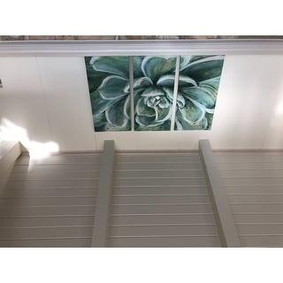SucculentHAC17-17994-3P