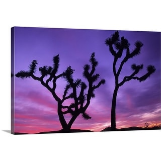 """Joshua Trees at sunset"" Canvas Wall Art"