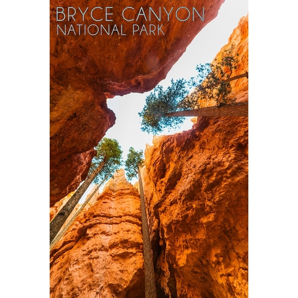 Bryce Canyon UT Navajo Loop Trail - LP Photography (Art Print - Multiple Sizes)